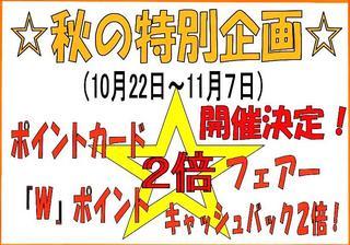 2010年秋Wポイントブログ用縮小11.JPG