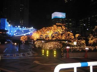 IMG_2400クリスマスイルミ.JPG