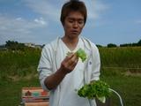 P1140559野菜から.JPG