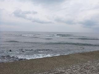 P1150963東大 (2).JPG