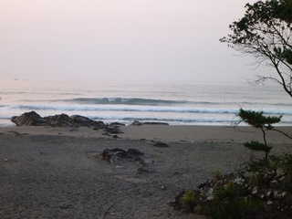 P1250054今年は波が大きい (2).JPG