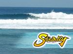 STRADIY1C[W.jpg